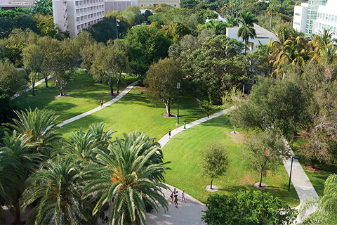 "An aerial photo ""the greenery"" on the University of Miami Coral Gables campus."